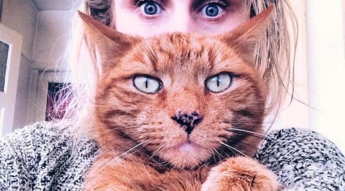 Met katten is het leven véél leuker