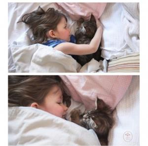iris slapen met kat