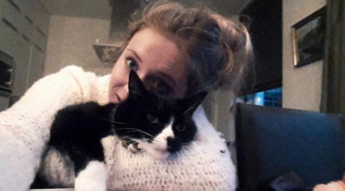 Baasje opgelucht, vermiste kat weer thuis