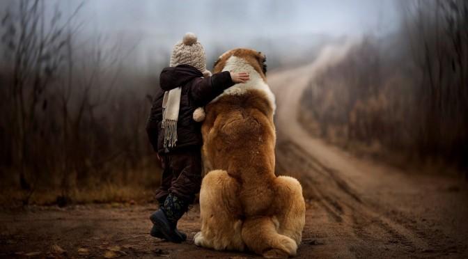 Empathie, voelt jouw hond met je mee?