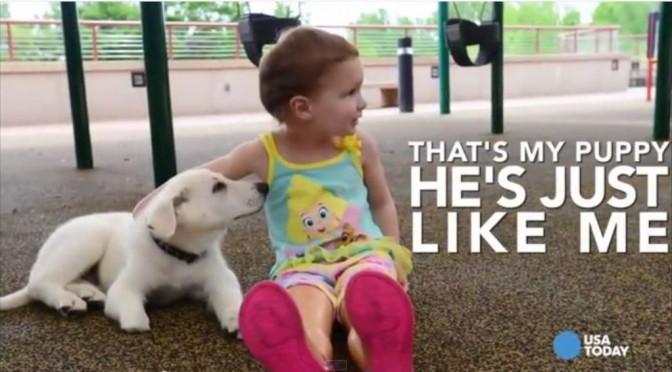 Meisje zonder voetjes krijgt hulp van hond zonder pootje